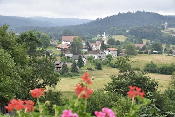 Vosges-liezey